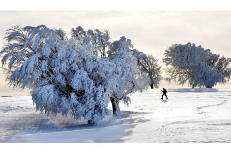 People go for a walk through the snow-covered landscape near the southern German city of Freiburg...